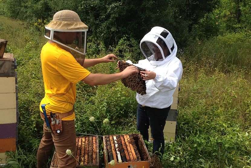 Volunteers holding up bee hive
